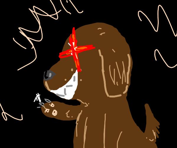 Murderous Puppy