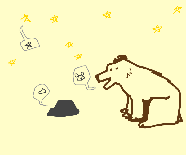 a bear a rock and a star saying what they are