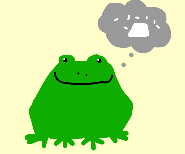 Frog thinking about rice
