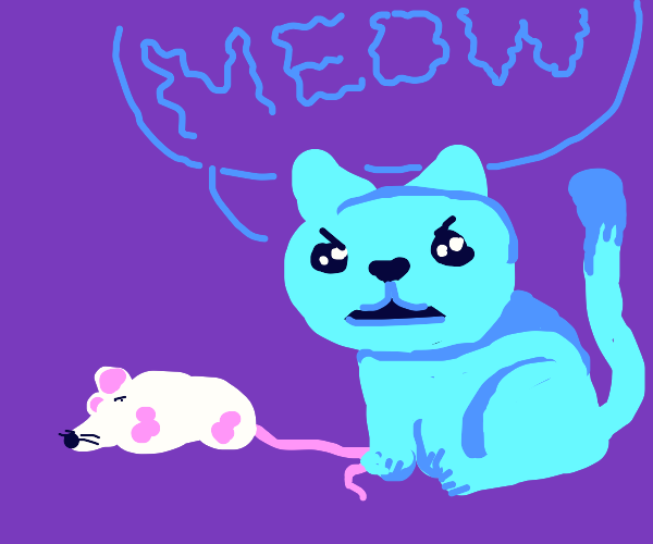 angry cat tries to intimidate pink mouse