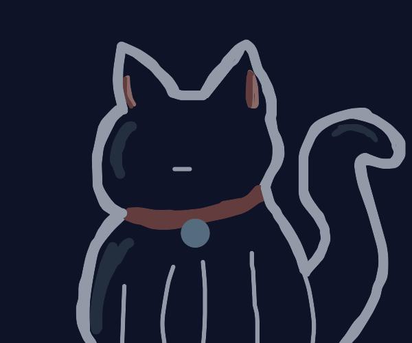 faceless black cat
