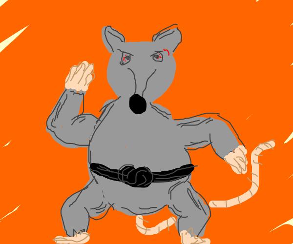 karate rat blackbelt