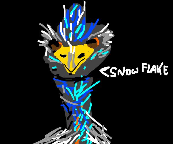 Boomer Emu