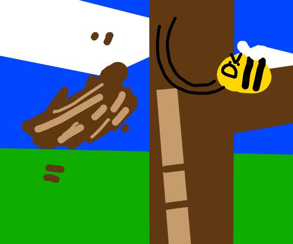 Bee ruins a birds nest