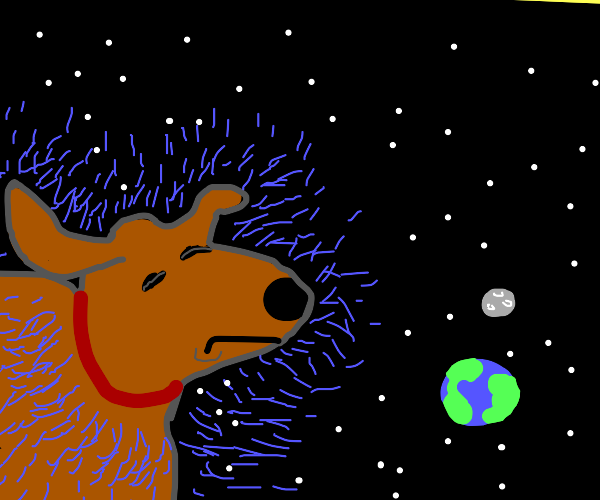 giant dog shaking in space