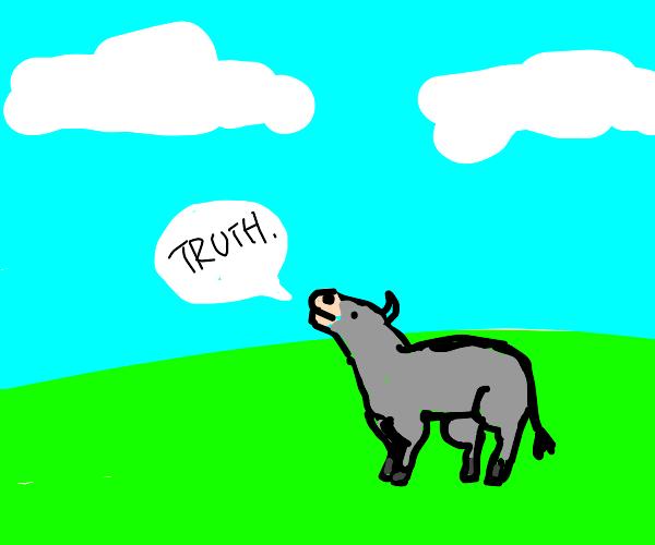 a bull sais the truth