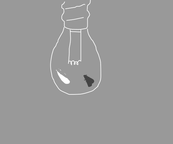 A moth drawn to a lightbulb
