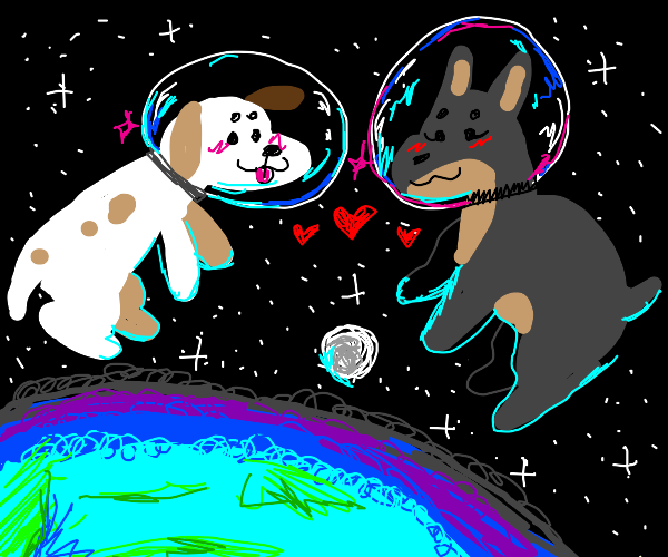 Dogs in love in space