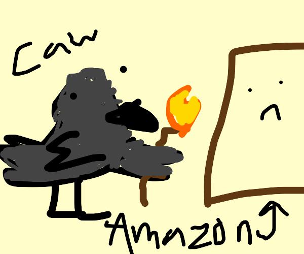 crow burns down amazon