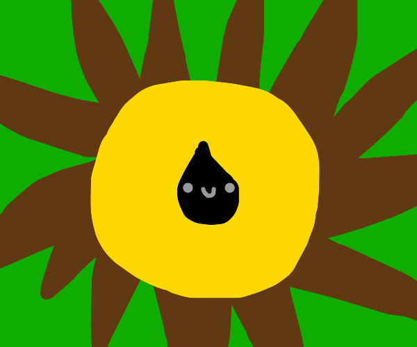 A sunflower with one seed on it