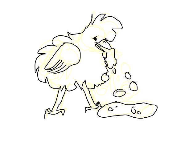 A bird throwing up