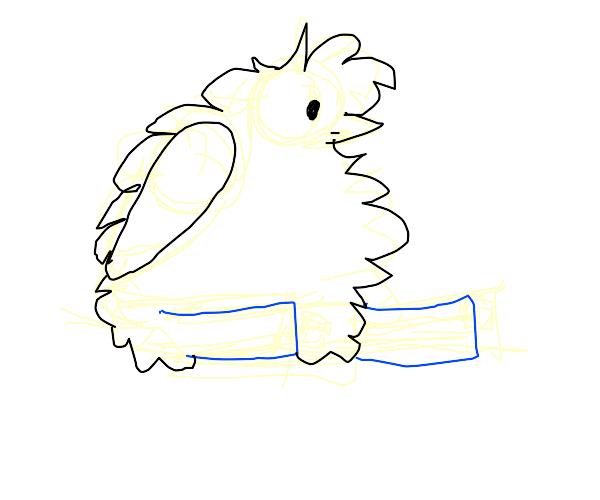 Birdie Bluejeans
