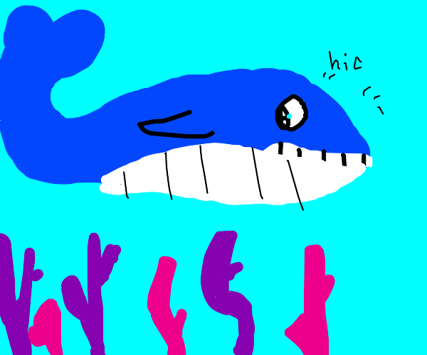 whale with hiccups