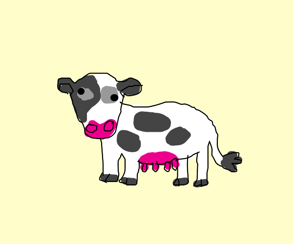 a derpy cow