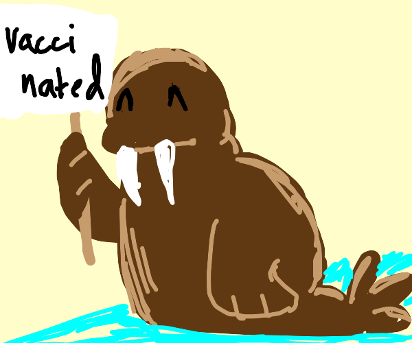 Vaccinated Walrus