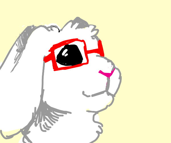 glasses bunny