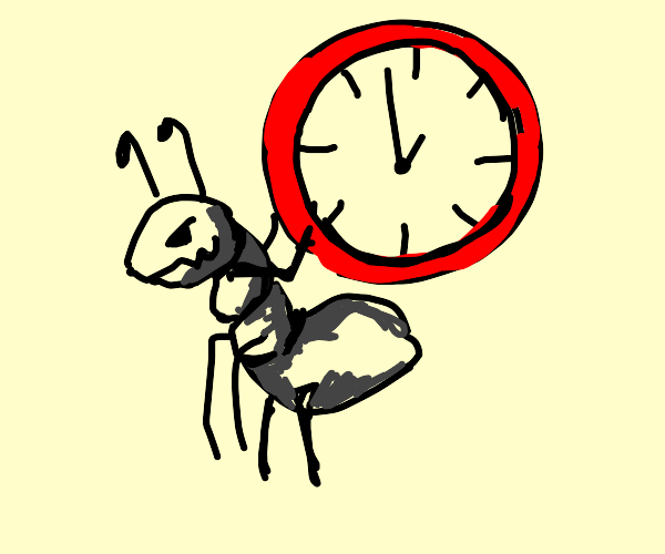 Ant stealing time