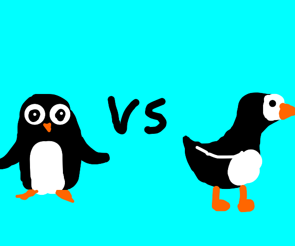 Penguins vs Puffins War