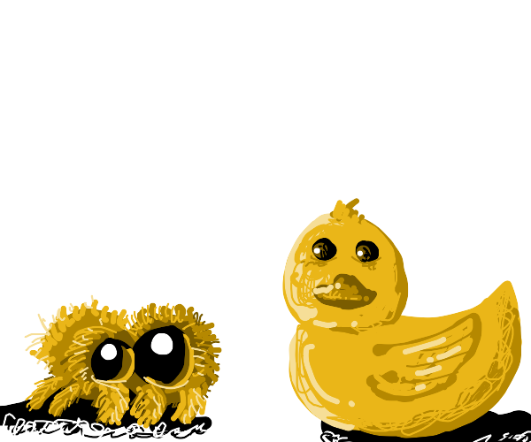 spider has a conversation with a duck