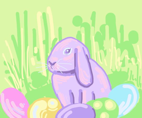 bunny hatching eggs
