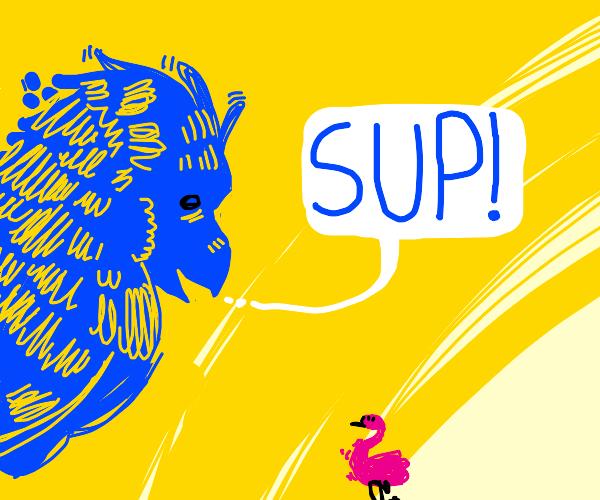 blue bird says sup