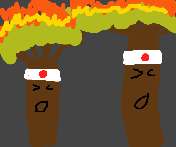 japanese trees are on fire