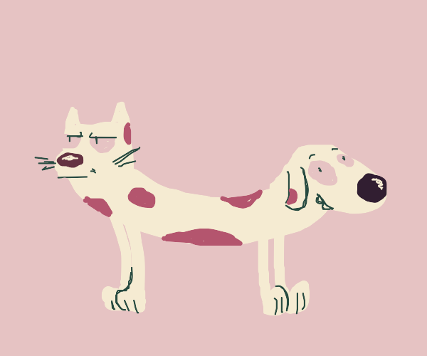 Catdog but albinos