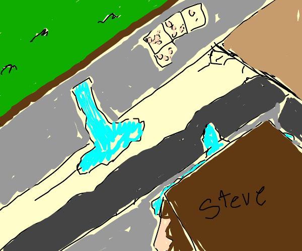 Steve looks at a ravine