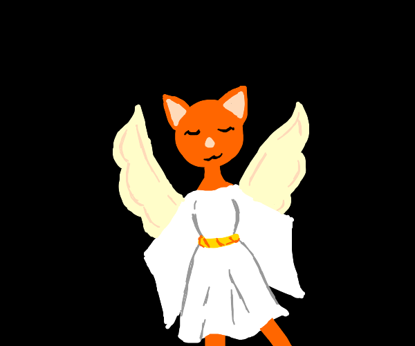 Cat with angel wings