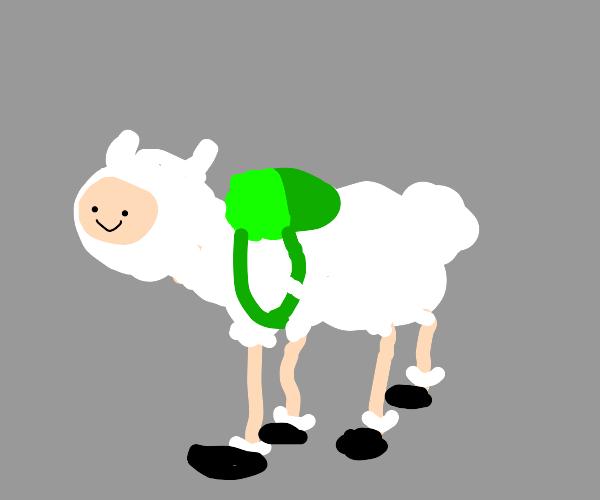 finn the sheep