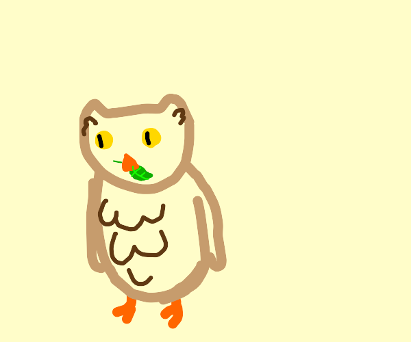 Owl eating a leaf