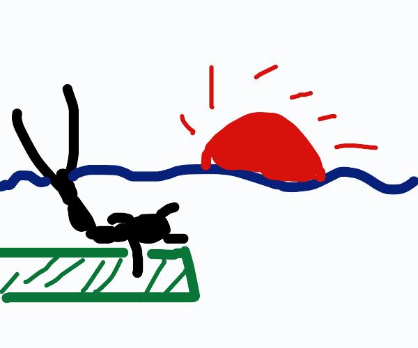ant doing yoga at sunrise
