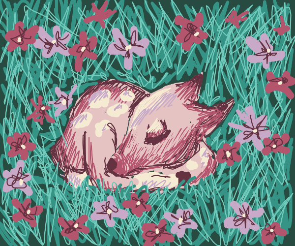 Small deer sleeping suronded by flower