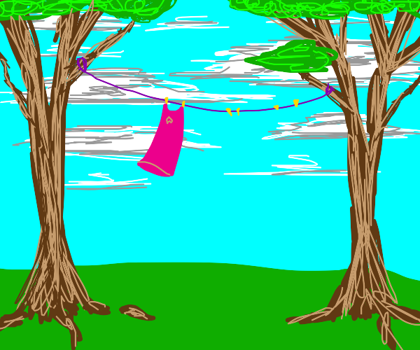 pink laundry hangs from trees