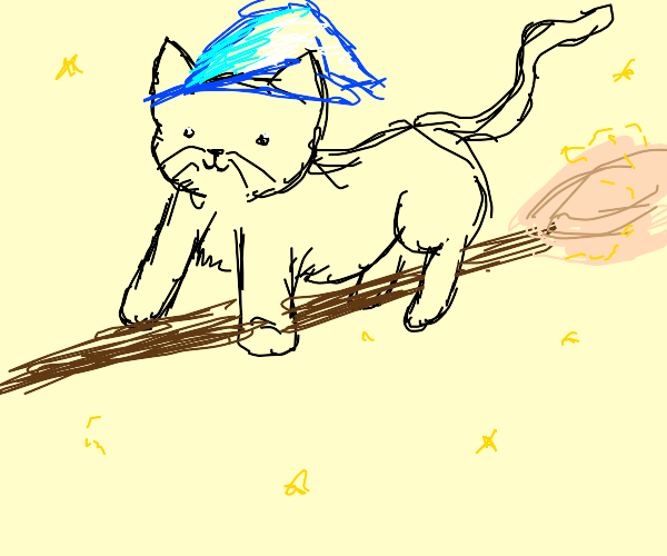Witch cat Witch cat Witch cat Witch cat