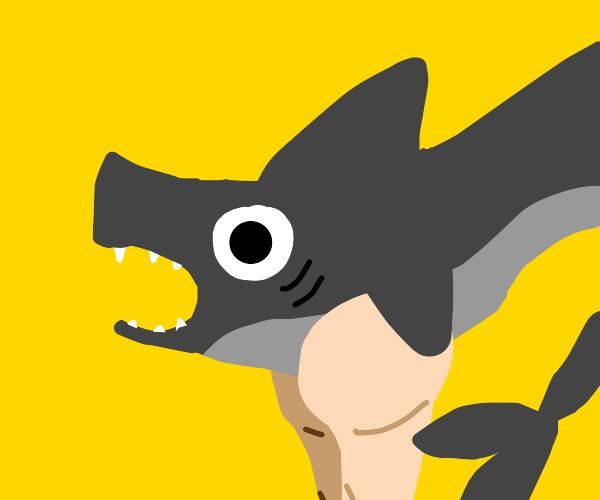 land shark with legs