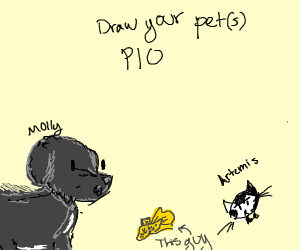 Draw your pet (pio)