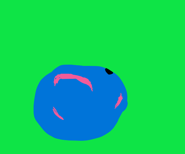 blueberry with scars