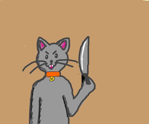 kitten with a machete