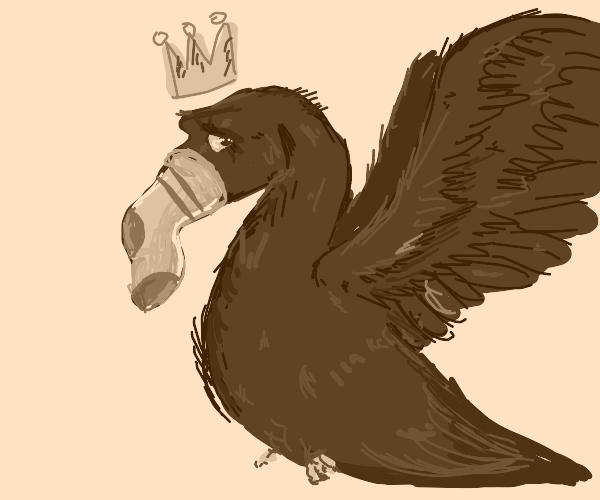 Fancy bird with sock for beak