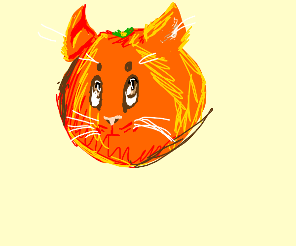 An orange has adorable cat face and ears
