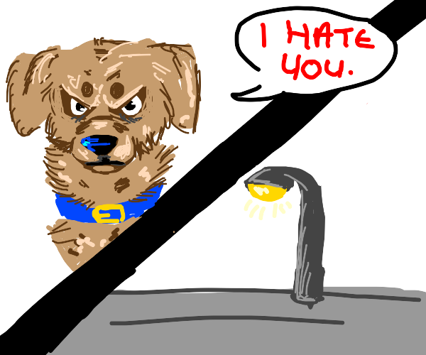 Angry dog is outraged at small street lamp