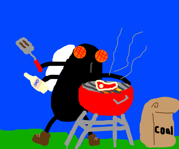 A fly is barbecuing