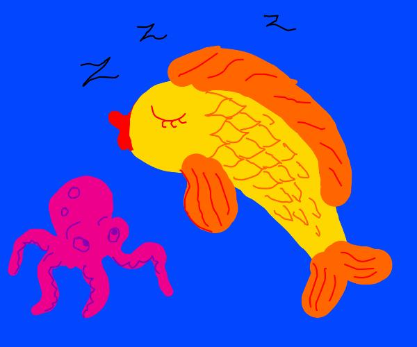 Sleeping fish and tiny octopus