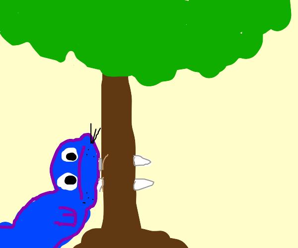 walrus stuck in tree