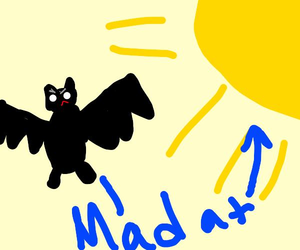 Bat gets anrgy at sunlight