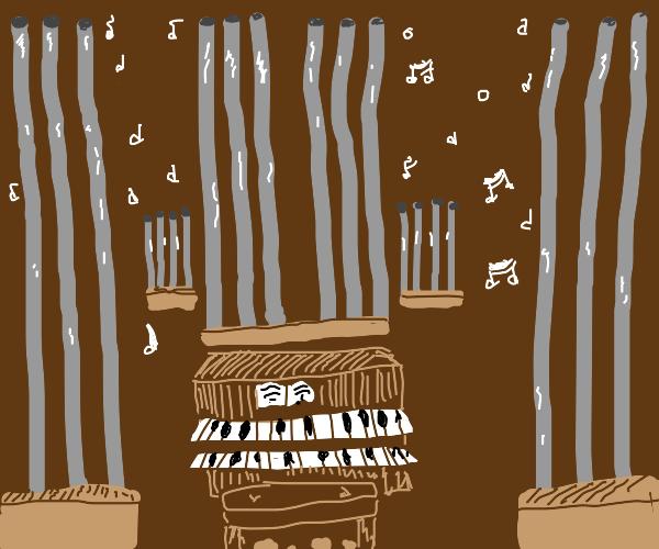 1990's Pipe Organ