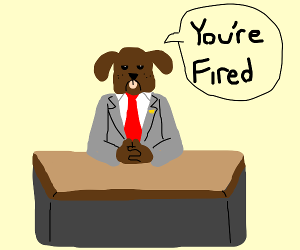 your boss is a dog