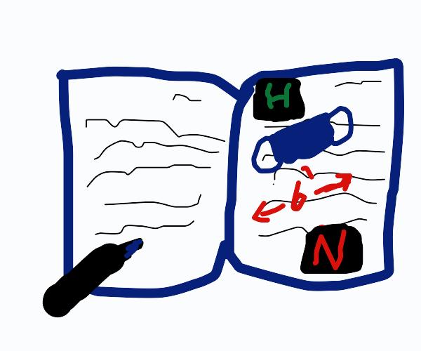 A quarantine diary
