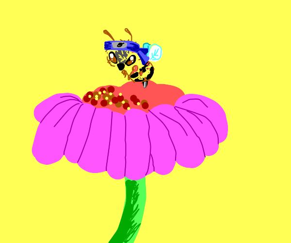 Ninja Flower Bee